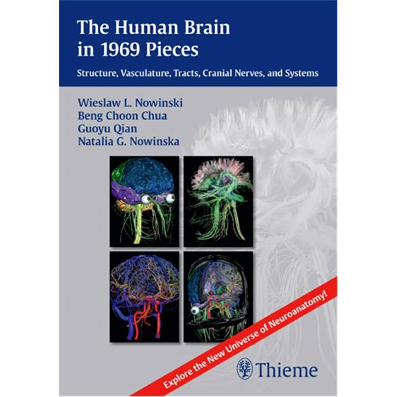 The Human Brain in 1969 Pieces - Structure, Vasculature, Tracts, Cranial Nerves and Systems
